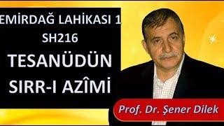 Prof. Dr. Şener Dilek - Emirdağ Lahikası 1 - Sh216 - Tesanüdün Sırr-ı Azîmi