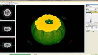 坊ちゃんかぼちゃ:ブツ切り動画