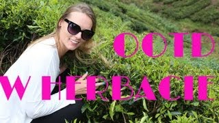 modnamariola Outfit w Cameron Highlands - wzgórza herbaciane, Malezja