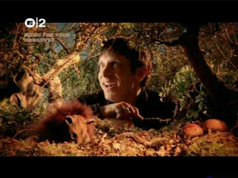 Mercury Rev - In a Funny Way.mpg