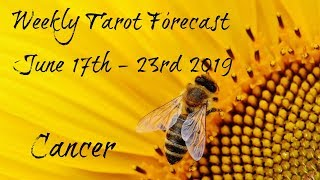 Cancer - A cause for celebration!- Weekly Tarotscope June 17th - 23rd