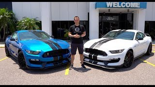 Is the 2019 Ford Shelby GT350R worth the EXTRA money compared to a GT350?