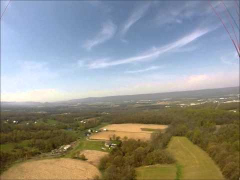 Paraglider Tree Landin