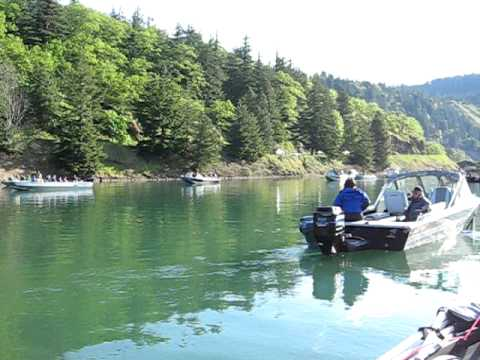 Drano Lake Fishing Drano Lake Toilet Bowl Slow