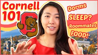 🐻EVERYTHING to know about Cornell University (for Prospective Students + Freshmen!) | Katie Tracy
