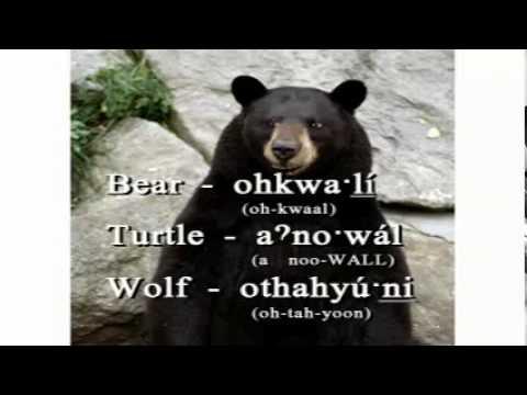Oneida Language Charlie the Talking Oneida Bear Shekoli