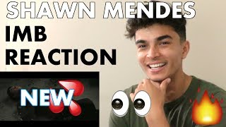Download Lagu Shawn Mendes- In My Blood (Official Video) REACTION w/Adrian Gratis STAFABAND