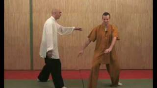 "Qi Gong (Chi Kung) ""Le jeu des 5 animaux"""