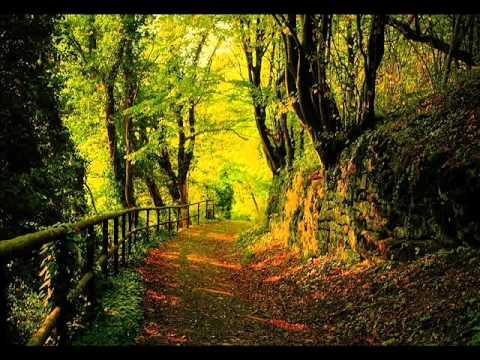 Grit - Autumn