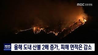 올해 산불 발생 건수 증가, 피해 면적 감소