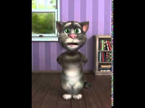 Tom Cat Singing Nani Teri Morni Ko Chor Le Gaye low