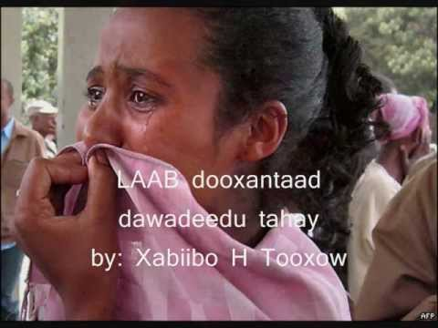 hees macaan 2012 laab dooxantaad dawadeedu tahay