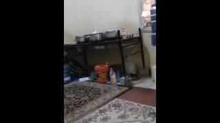 India assam hojai sexy video