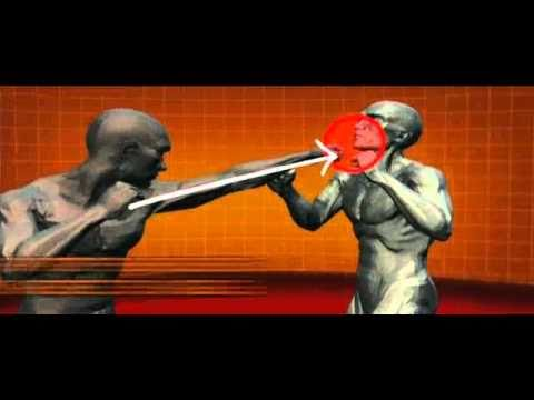 Master Moves of Savate (French Kick Boxing) : Human Weapon Image 1