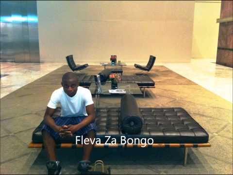 Fleva Za Bongo video