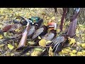 Коллективная охота на фазана Столько фазана еще не было 9 петухов mp3
