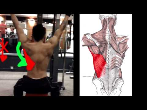 How To Properly: Do Lat Pulldowns Image 1