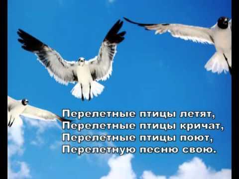 Валерий Короп - Перелетные птицы