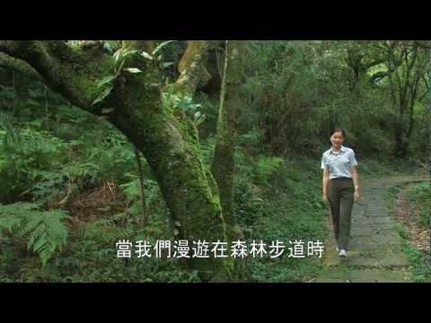 陽明山國家公園_認識蕨類植物