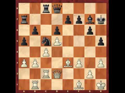 Chess: Susan Polgar 2500 - Petar Popovic 2520, Sicilian - Maroczy Bind http://sunday.b1u.org