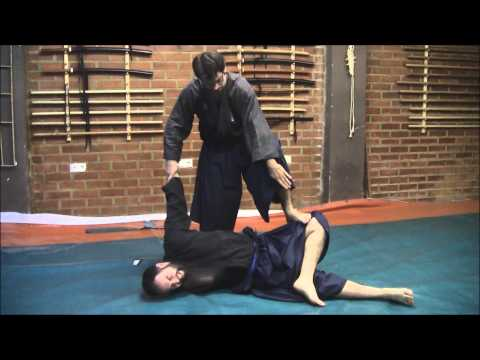 Ogawa Ryu - Aikijujutsu - Training moments - 2014 Image 1