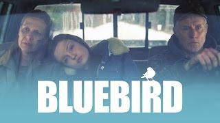 Bluebird (Amy Morton, John Slattery, Adam Driver) - Full online - We Are Colony