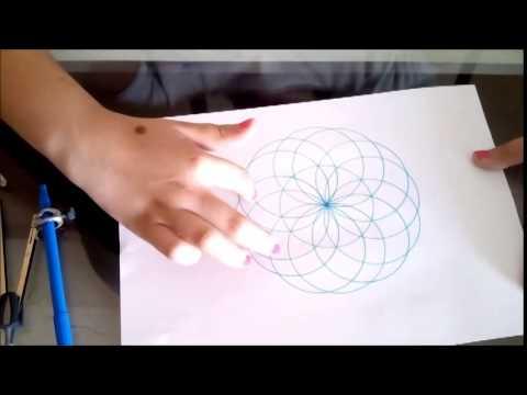 Como hacer una flor con comp s youtube - Como aislar una pared del ruido ...