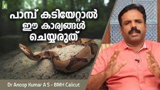 പാമ്പ് കടിയേറ്റാൽ ഈ കാര്യങ്ങൾ ചെയ്യരുത്   Malayalam Health Tips