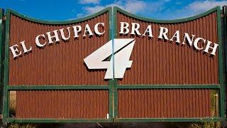 Racer X Films: El Chupacabra Ranch Update with Blake Baggett