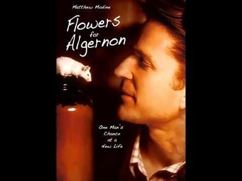 Shunyamurti Introduction: Flowers for Algernon (2000)