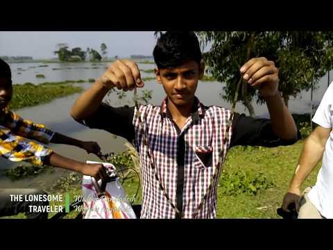 Reisen in Bangladesch. Baikka Beel - Jewel macht eine Seerosen-Kette.