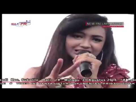 download lagu Suket Teki Jihan Audy New Palapa gratis