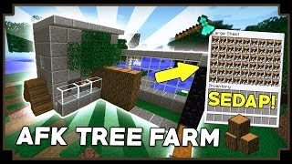 CARA MEMBUAT AFK TREE FARM - Minecraft Indonesia