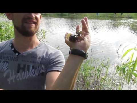 видео ловля крупного карася в камышах