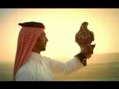 Qatar Travel Video