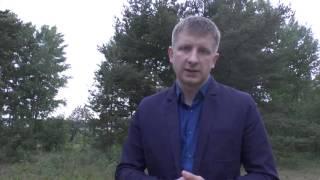 Как проверить земельный участок Проверить документы на земельный участок | АЛЕКСАНДР Недвижимость
