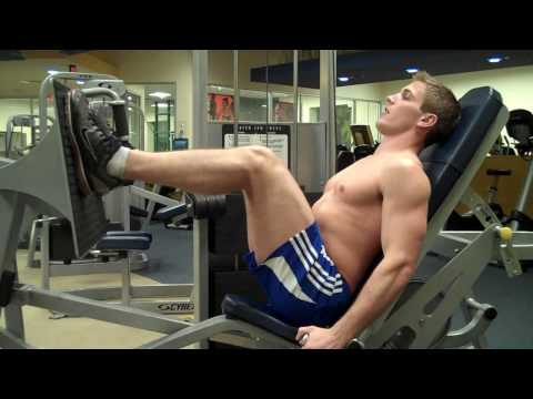 How To: Seated Leg Press (Cybex) Image 1