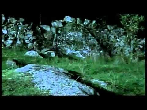 Documental del Lobo Ibérico
