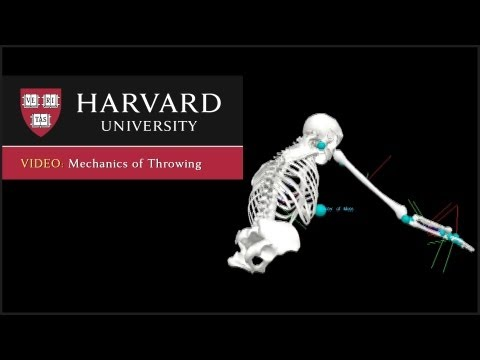 Mechanics of Throwing