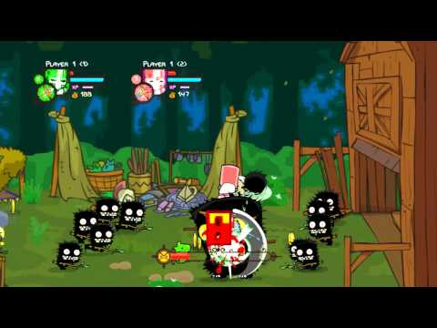 Castle Crashers Co-Op Local PC