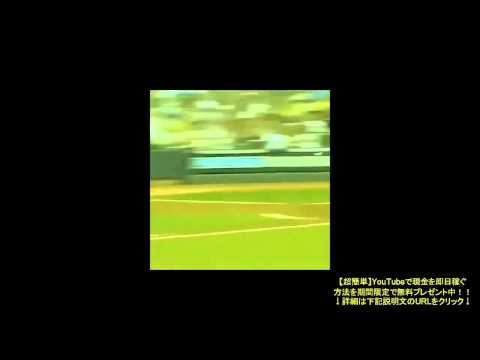 【神業 スポーツ 】World Wide Sport VINES Compilation #2
