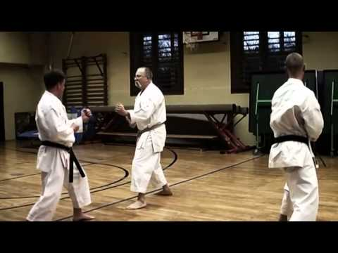 Kumite Training With Sensei Gyula Büki  7th Dan Shotokan Karate video