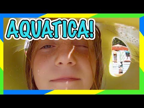 🐬 SEA WORLD AQUATICA ORLANDO! | ORLANDO WATER PARK | [DAILY VLOG]