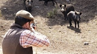 Охота на кабана!!! Hunting for wild boar!!!