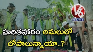 Special Story On Drawbacks In Haritha Haram Program Implementation
