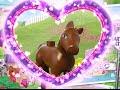 Little Foal - LEGO Friends -  41089 - Product Animation