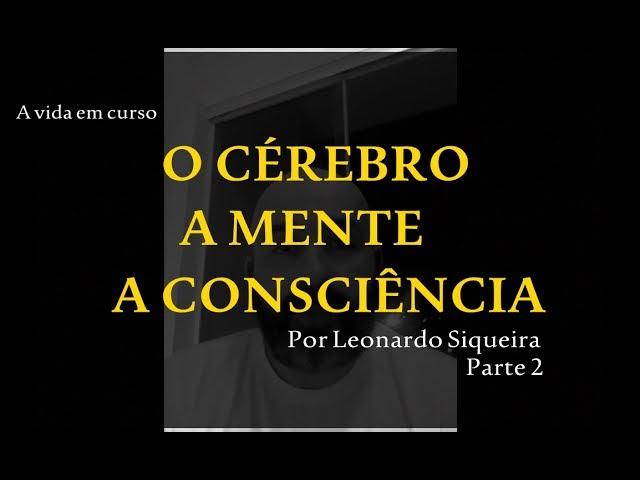 Estudo 2 - O cérebro, a mente e a consciência (Parte 2) - Por Leonardo Siqueira