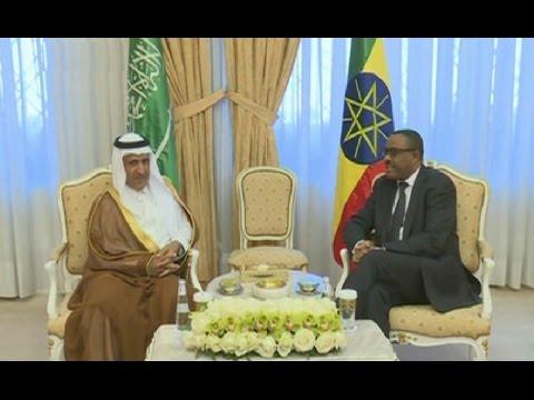 Ethiopia And Saudi Arabia relations - Policy Display