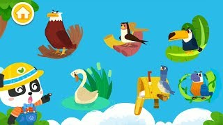 Trò chơi Vui Nhộn Cho Bé - Bé Khám Phá Các Loài Chim Cùng Bé Gấu Trúc