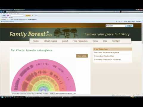 Explore your ancestral history an overview of FamilyForest.com